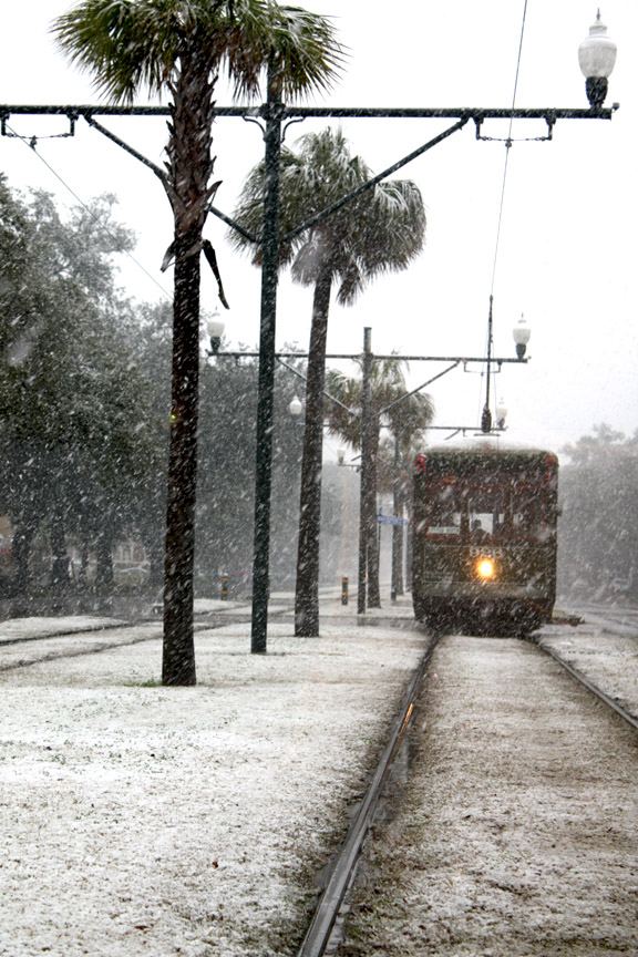 Snow on St. Charles Avenue in New Orleans on 12/11/2008